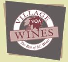 village-vqa-logo